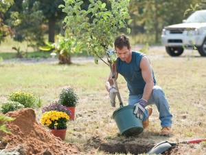 Plant A Tree In Tuttle Oklahoma