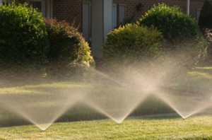 Irrigation Sprinkler System in Pink, OK