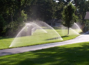 Sprinkler System in Oklahoma City