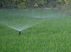 sprinkler irrigation systems in Lexington OK