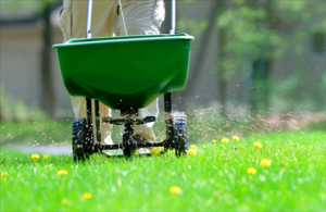 Overseeding Lawn Jones, Oklahoma