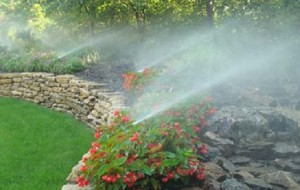 Sprinkler Systems for Landscape