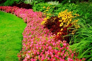 Spring Landscaping in Lexington Oklahoma